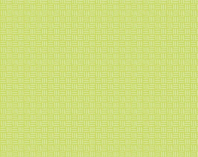 Half Yard Bugs - Hatchmarks in Green - Cotton Quilt Fabric - by Jone Hallmark for Blend Fabrics (W1835)