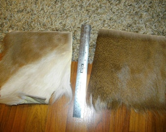 White tailed buck deer skin chunks for crafts