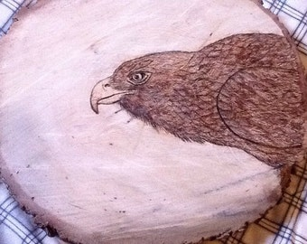 Hawk wood burning