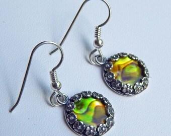 CLEARANCE - Gold Paua Shell Earrings Abalone Dangle Earrings Paua Shell Earrings