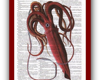 Print Vintage Squid Poster Kraken Octopus Natural History  Art Print:  Scientific Illustration Art Print