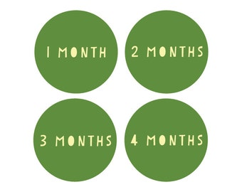 Reusable Monthly Baby Shirt Stickers - Month to Month Reusable Milestone Stickers