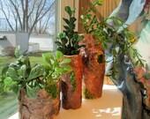 Unique indoor planting pots - Recycled wood