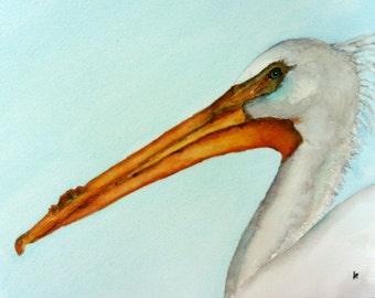 original bird painting bird art Pelican watercolor painting Betty Moore