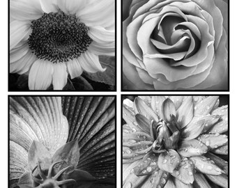 Flower Photo | Dahlia Photo | Sunflower Photo | Rose Photo | Floral Art Set | Black White Flower Set | Flower Photo Series | Macro Flower