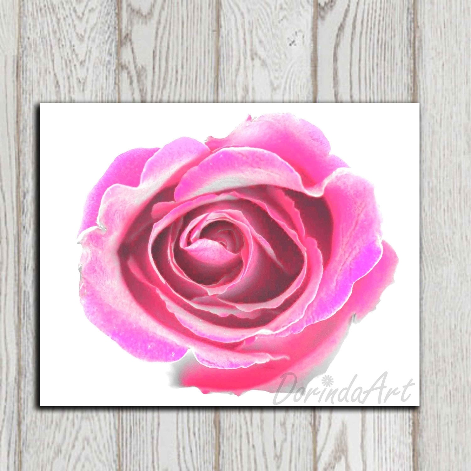Flower Print Wall Decor Hot Pink Home Decor Pink Flower Decor