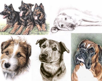 YOUR DOG portrait drawing