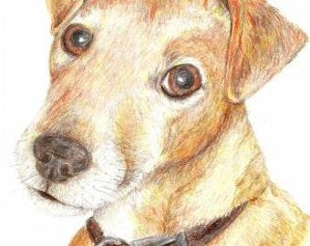 Custom Pet Portrait A5 Colour Pencil