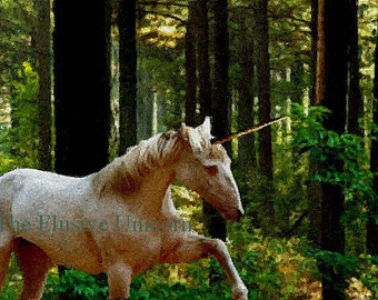 In search of .... 8 x 10 Unicorn print photograph altered art nature trees forest shadow green