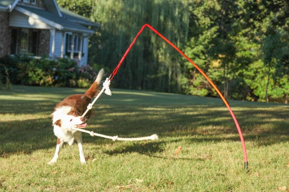 tether tug dog toy w knotted rope pull toy
