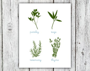 Herbs Illustration Art Print, Parsley Sage Rosemary and Thyme art print, Spring Summer kitchen decor, home decor