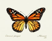 26 Monarch Butterfly Painting Card