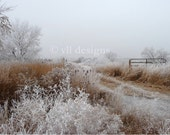 Digital Download Foggy Frosty Field5  Digital Background Photo Background Digital Photography - SoulFILLedExpression