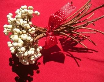 Tallow Berry Bundles Fresh Dried Texas Tallow Berries 30 Plus Stems per Bundle