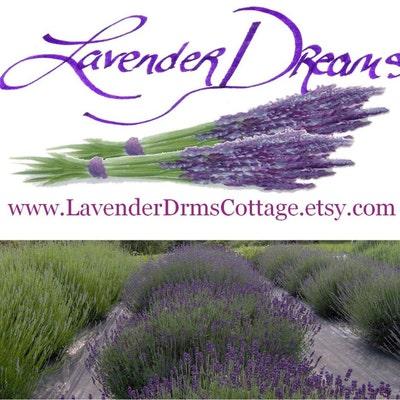 LavenderDrmsCottage