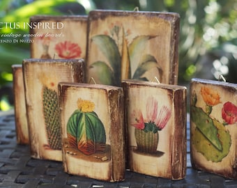 decorative wooden tablets with antique cactus