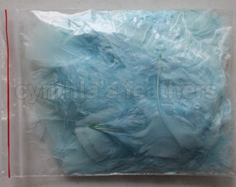 """10g (0.35Oz) aqua blue 3~4"""" turkey plumage feathers 80~120 counts, for crafting, sewing, etc, SKU: 7G31"""