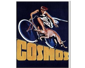 Retro Bike Poster Vintage Cycling Art Print (H232)