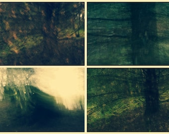 Garadhban Forest, original fine art photography, print, collage, abstract, montage, nature, 8x12, green, tree, woodland, scotland, yellow