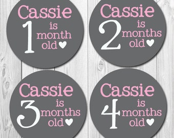 Custom Monthly Stickers, Personalized Baby Month Stickers, Milestone Stickers, Chalkboard Stickers, Baby Month Stickers Girl, Bodysuit