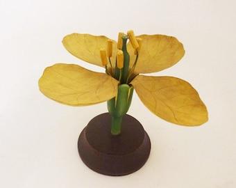 Biological model yellow flower Brendel style