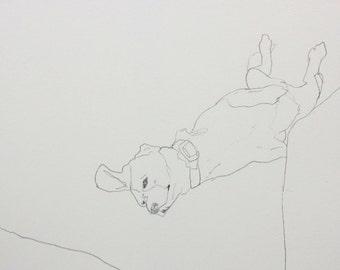 Relaxing Dog - Original pencil line drawing