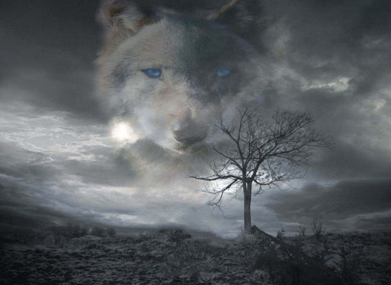 Wolf In Clouds 2 Rv Trailer Or Wall Mural Decal Decals