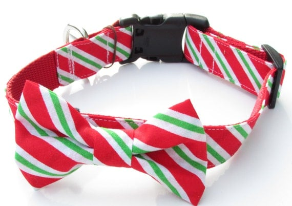 Red, White & Green Striped Collar