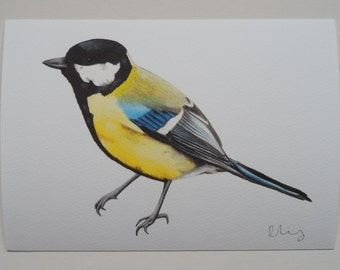 Great Tit Illustration Giclee Print, A5