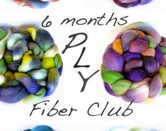 fiber club hand painted luxury wool roving for spinning or felting - customizable - 6 month membership - pancake and lulu fiber club