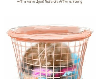 "Funny Cat greetings card: ""Arthur has been doing the Ironing"" - cat sleeping in a washing basket, cat logic, mad cat lady. by Nancy Farmer."