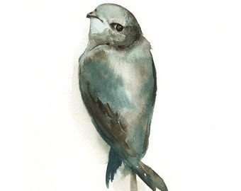 "watercolor painting ,bird watercolor, decor, cottage, nature, grey, blue- ""Miss Adorable"" -Bird Art"