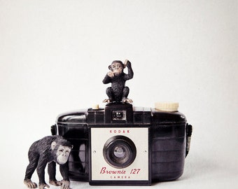 Kids wall art, vintage camera, nursery art, childs room decor, monkey, quirky, fun, nursery wall art animals - The Monkies and the Brownie