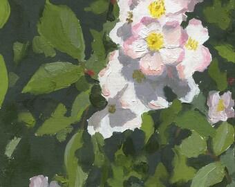 Original Still Life Floral Oil Painting -  Lyda Rose