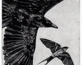 Raven artwork , Raven, crow,  black bird, Swallow,  Aesop Fables,  etching