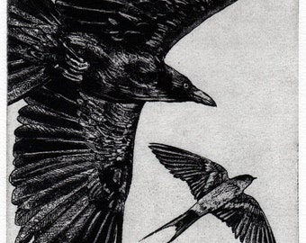 Raven artwork , Raven, crow,  black bird, Swallow,  Aesop Fables,  etching