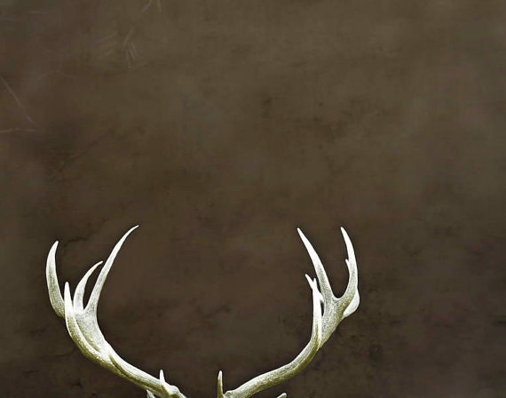 Deer antlers large wall art rustic decor dark brown by for Antler wall decor