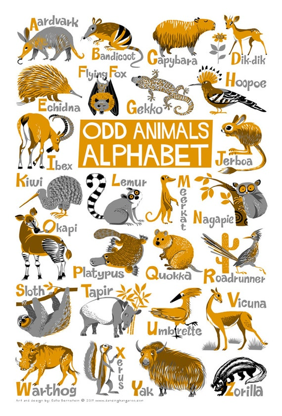 Animals That Start With The Letter V