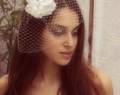 Bridal headpiece With Birdcage Veil - Birdcage veil lace Flower - White and Silvery