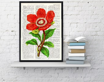 Summer Sale Red Peony flower Vintage Book Print Dictionary or Encyclopedia Page-  Peony flower  on Vintage  Book art BFL119