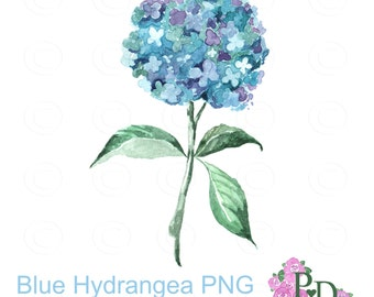 Watercolor Clipart, Blue Hudrangea Watercolor Clip Art, Digital Clipart, Watercolor Clip Art, Flower Clipart, PNG no background EasyPrintPD