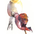 """Goldfinch watercolor painting- GF8115-  Print of watercolor painting 5"""" by 7"""" size"""
