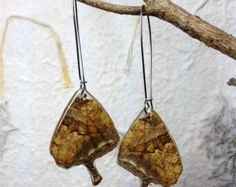 Aretes con Alas de Mariposa encapsulados en Resina y gancho largo de acero inoxidable. Reversibles Antialérgicos