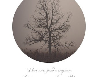 Nature Photograph   Tree in Fog   Landscape   Circle Typography Thoreau Quote   Solitude   Peaceful Home Decor   Walden   Wall Art   Winter