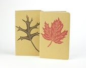 Red Sugar Maple or Pin Oak Leaf, Travel Journal with inner pocket, stationery, fall, turning leaves. Free gift tag.