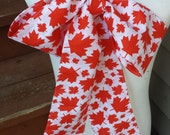 Upcycled Steampunk Clothing,Canada Day Bow Tie, Cat in the Hat Bow Tie, Red and White Cotton Print Neck Tie, Handmade Costume Accessory