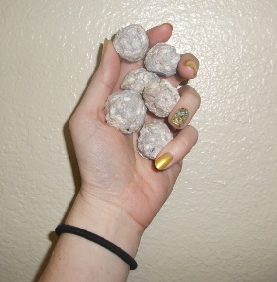 10 Organic Roma Tomato Seed Bombs for Guerilla Gardening - Animal Safe