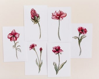 Set of 6 Botanical Red Flower Prints Watercolor