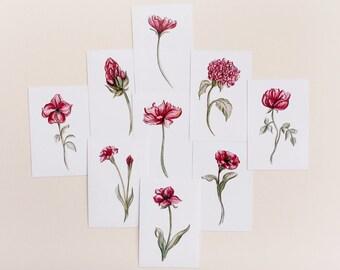 Set of 9 Botanical Red Flower Prints