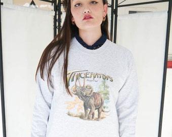 Triceratops  Dinosaur Jumper, Dinosaur Sweatshirt, Dinosaur Sweater, Triceratops, Land Before Time, Jurassic Park Sweatshirt, Dinosaurs, New